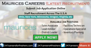 Maurices Careers